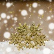 Job hunting tips for the festive season